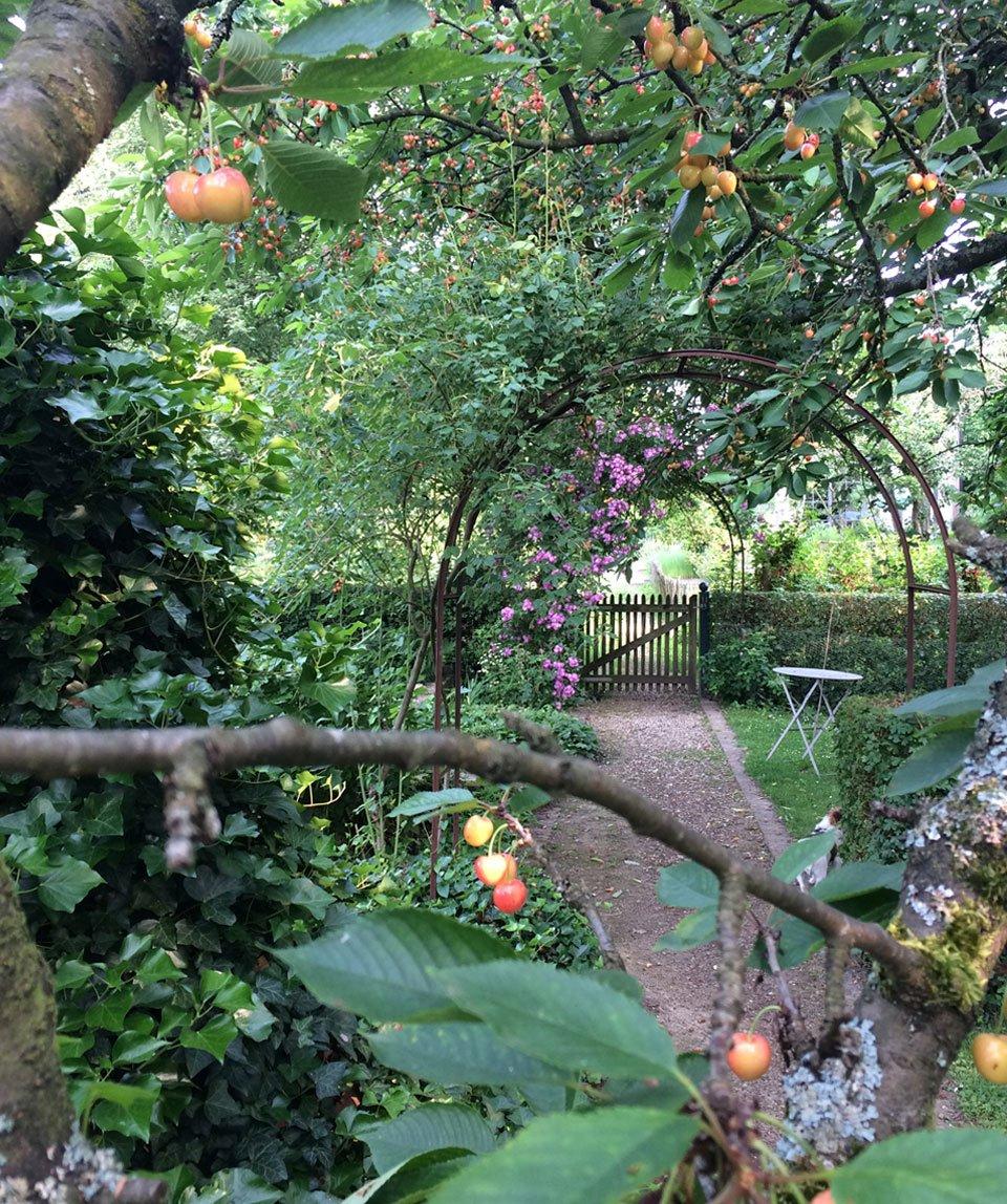 Jardin Sous les Tilleuls Bruxelles