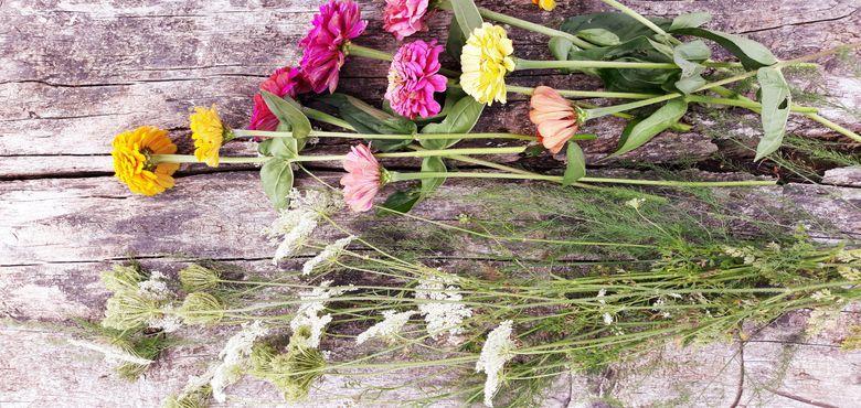 La folle saison des fleurs